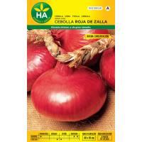 Semillas de cebolla roja de zalla