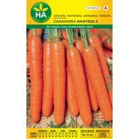 Semillas de zanahoria Nantesa 5
